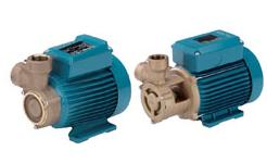 B-CT, B-T (M) Bronze Peripheral Pumps