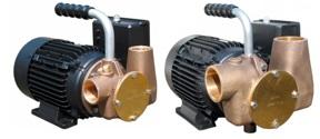 Lowara Versatile Utility Pumps