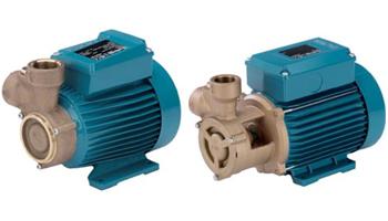 B-CT, B-T (M) Bronze Peripheral Pumps
