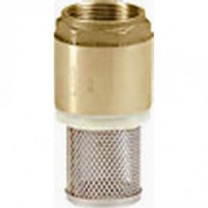 "2 "" (50mm) Brass Filter Footvalve (Female Connections)"