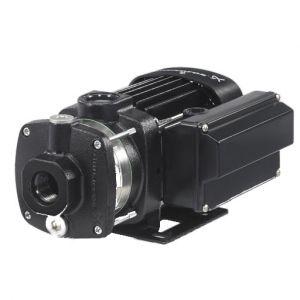 CM pump 240V