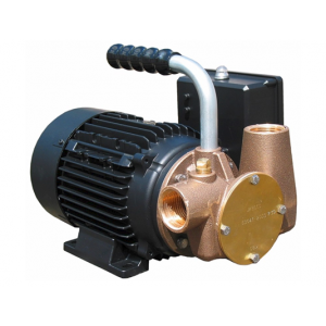 Lowara Utility 40 (230/1/50) Self Priming Versatile Pump 240v