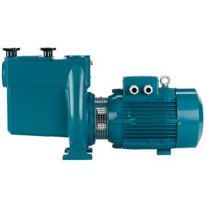 NMP Cast Iron Swimming Pool Pump