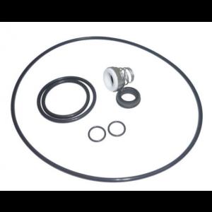 Lowara SiC/SiC Mechanical Seal Kit (FPM) for e-SV 33/46/66/92/125 Range