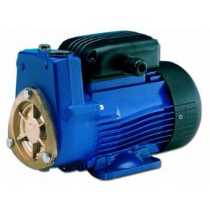 Lowara SP5T Self Priming Peripheral Pump 415v