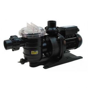 Pentair Swimmey 24T Centrifugal Swimming Pool Pump 415v