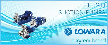 Lowara e-SH 4 Pole End Suction Pumps