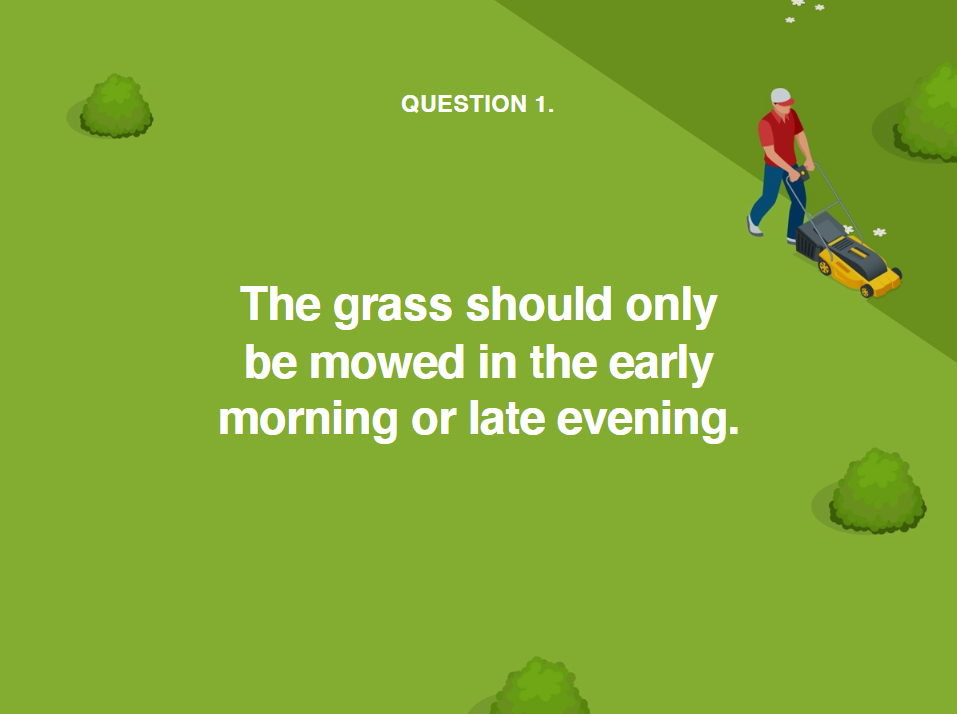 image showing when to mow grass during a heatwave