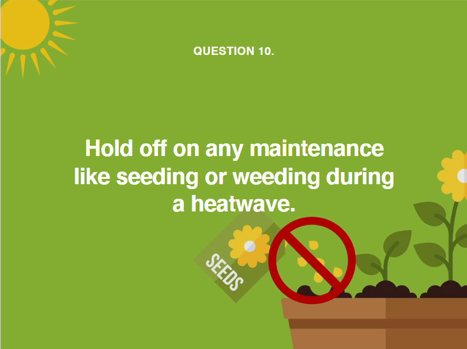 image telling you to hold off lawn maintenance such as weeding during a heatwave