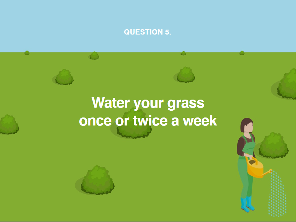 image showing you how often to water your grass during a heatwave