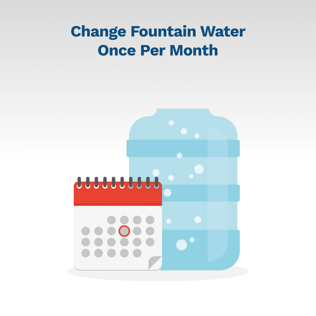 image telling you to change fountain water regularly to keep fountain clean